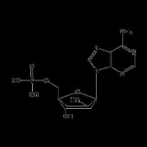 单磷酸阿糖腺苷
