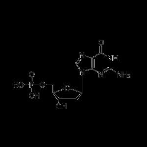 2′-脱氧鸟苷酸
